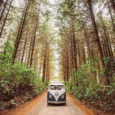 Todo el mundo hemos pensado en perdernos con una #California y viajar alrededor de todo el mundo.   Y ahora podemos, entra en http://www.cochessegundamano.es/volkswagen/ y encuentra esta preciosidad al mejor precio