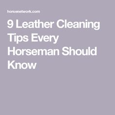 9 Leather Cleaning Tips Every Horseman Should Know