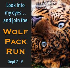 Wolf Pack 99 Cent Sale & Giveaway! Sept 7 - 9 2016
