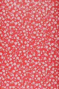 A lush red wallpaper decorated with a trail of delightful pink and white flowers. Red Wallpaper, Iphone Background Wallpaper, Aesthetic Iphone Wallpaper, Flower Wallpaper, Aesthetic Wallpapers, Tela Do Iphone, Image Deco, Cute Patterns Wallpaper, Pretty Wallpapers