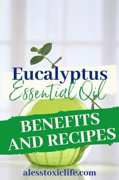 Eucalyptus Essential Oil has many benefits and uses. Learn them here and how to use it. Check out the recipes so you can get benefits from this awesome oil today. Herbal Remedies, Health Remedies, Natural Remedies, Essential Oils For Skin, Eucalyptus Essential Oil, Essential Oil Uses, Health Benefits, Health Tips, Recipes