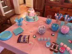 Gender Reveal Party Pink and Blue Owl Theme