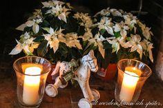 Tea Lights, Candles, Christmas Stars, Tea Light Candles, Candy, Candle Sticks, Candle