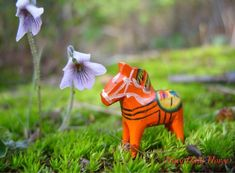 Tiny Dala Horse finds some marsh violets.  Follow all his Alaskan adventures on Facebook!