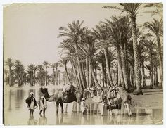 """https://flic.kr/p/5JTJ6Q 