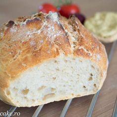 paine de casa rapida drojdie