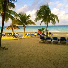 7 mile beach at Grand Pineapple Beach Resort in Jamaica.  We sat here every night and listened to the tide.  Second honeymoon can't come soon enough