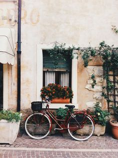 http://s8.favim.com/610/150627/bike-flowers-mediterranean-neighborhood-Favim.com-2857048.jpg