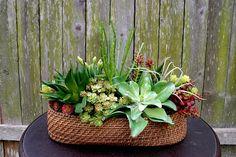 Long Faux Succulent Arrangement Centerpiece Faux Succulent