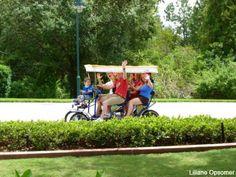 FREE things to do at and around Walt Disney World Resort via @Donna Suh Wageman Tourist and @Liliane Chandonnet Opsomer. #free #Disney