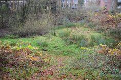Fotos vom verlassenen Teil eines riesigen Nervenheilanstaltgebietes (Psychatrie)   Versunkene Kapelle   Copyright: www.lost-places-nrw.de