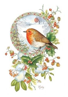 robin christmas cards - Google Search
