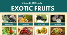 Exotic Fruits | List of 75+ Exotic Fruits You've Probably Never Heard Of 1 Cape Gooseberry, Fruit List, Visual Dictionary, Fruit Picture, Cheese Fruit, Apple Roses, Exotic Fruit, Vegan Dishes, English