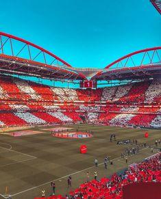 SLB❤️🦅 Soccer Stadium, Football Stadiums, Big Love, First Love, Benfica Wallpaper, Sc Internacional, Hail Mary, Football Boots, Nfl