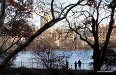 TIMES SQUARE, FASHION WALK OF FAME Y CENTRAL PARK. DÍA 9 EN USA. Central Park (Upper West Side)