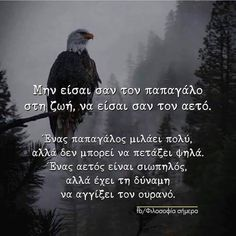 Motivational Quotes, Funny Quotes, Life Quotes, Funny Phrases, Greek Quotes, Life Motivation, Picture Quotes, Wise Words, Bald Eagle