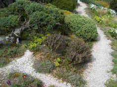 allée de jardin paysager avec du gravier blanc