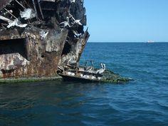 El ferry hundido cerca de la costa de Cubagua — en Nueva Esparta.