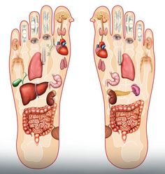 mprove Your Sleep With This Foot Massage . It is recommended to massage your feet nightly before you go to bed. we will strengthen our immune system. Massage For Men, Foot Massage, Massage Oil, Gm Diet, Body Map, Before Bed, Salud Natural, Massage Benefits, Reduce Belly Fat