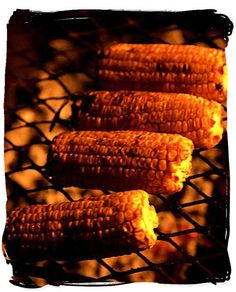 mmm, miss those bbq corns on the corners in Nairobi, Kenya. Mielies (maize cobs) grilled directly on the braai over the coals are a delicacy not to be missed Braai Recipes, Wine Recipes, Zimbabwe Food, Old Coke Crates, Kenya Food, South Africa Tours, South African Recipes, House On The Rock, Food Tasting