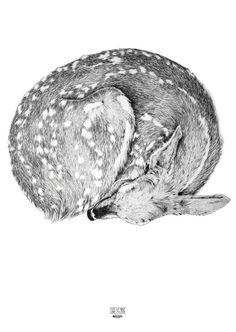 Illustration card deer Cheyenne by Cheyenneillustration