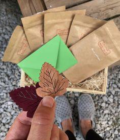 Odebírej Čajové Bedýnky a každé roční období Ti dorazí bedýnka s výběrem 5 sypaných čajů z různých koutů světa. S návodem na přípravu a překvapením. Jde také o dobrý tip na dárek ať pro Tvé blízké nebo obchodní partnery. Toto je Podzimní Čajová Bedýnka 2020. Napkins, Gift Wrapping, Tableware, Gifts, Gift Wrapping Paper, Dinnerware, Presents, Towels, Dinner Napkins