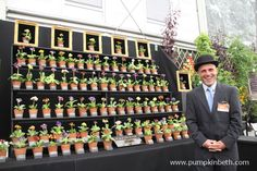 Beautiful, Gold Medal winning Florist Auriculas with Simon Lockyer of W & S Lockyer Auricula Specialists. Primula Auricula, Buy Plants, Garden Show, Chelsea Flower Show, Container Plants, Gardening Tips, Garden Design, Spring, Flowers