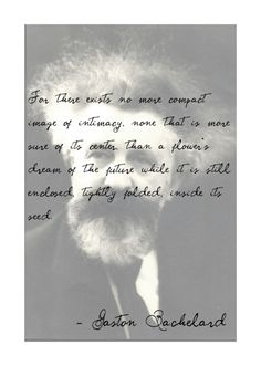 Gaston Bachelard quote - The Poetics of Space