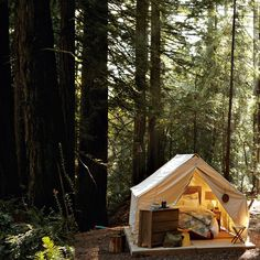 Gorgeous campsite photo from West Elm's blog Front & Main