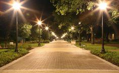 Military Walk - Texas A&M University