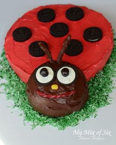 "Ladybug cake. I would like to fin a ""Pug Dog"" cake. Let me know if you see one."