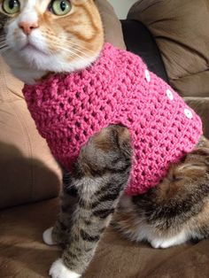 This cozy button-up pet sweater is super cute with its trench coat resemblance! Keep your furry loved one snugly warm during the cold season with