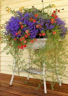 .lush and lovely in wicker. Nice color....a wicker  coffee  table would do well and a white container.