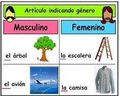 Sustantivos: género y número Spanish Anchor Charts, Spanish Word Wall, Spanish Words, Spanish Lessons, Spanish Teacher, Spanish Classroom, Teaching Spanish, Teaching Cursive, Teaching Writing