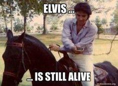 Elvis Presley using babylonokia