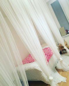 Curtain divider in small studio