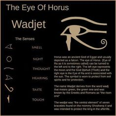 the eye of Horus.also note, green is relative to heart chakra, so a good color option for expanding awareness of energy flow through heart ; Egyptian Mythology, Egyptian Symbols, Egyptian Art, Mayan Symbols, Viking Symbols, Viking Runes, Egyptian Goddess, Ancient Symbols, Ancient Artifacts