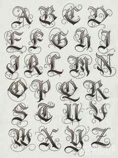 Tatto Ideas 2017 – lettering typographie calligraphie gothique majuscules… Tatto Ideas & Trends 2017 – DISCOVER lettering typography uppercase gothic calligraphy Discovred by: Constance Dvllr 2017 Lettering, Tattoo Lettering Fonts, Hand Lettering, Fonts For Tattoos, Graffiti Lettering Fonts, 2017 Typography, Lettering Fonts Design, Tattoo Font Styles, Graffiti Tattoo