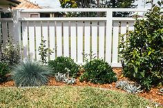 Kyal and Kara have project managed, designed or completed over 25 renovation projects. Garden Front Of House, House Front, Front Yard Fence, Fenced In Yard, Outdoor Plants, Outdoor Gardens, Landscape Design, Garden Design, Hampton Garden