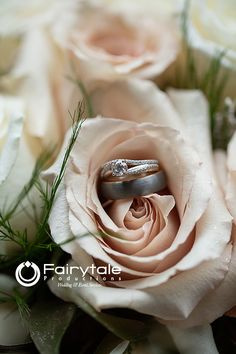 Roses and rings, the perfect combo for a wedding! Beach Weddings, Unique Weddings, Portrait Shots, Portraits, Wedding Shot List, Bridal Party Getting Ready, Wedding Trends, Photo Shoot, Michigan