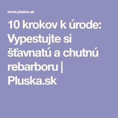 10 krokov k úrode: Vypestujte si šťavnatú a chutnú rebarboru | Pluska.sk