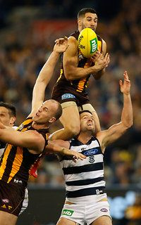Paul Puopolo Australian Football League, Sports Activities, Hawks, Rugby, Melbourne, Poses, Club, Stars, Fitness
