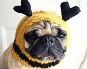 @Wendy Donnell, you need to check out this Etsy shop! Pug hats and gifts!