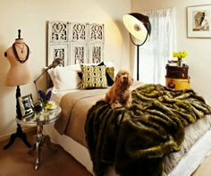 Home style: Awesome room, awesome dog