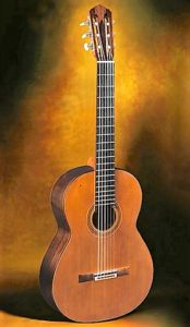 The best of the best guitar builders   Classical Guitar SA Julian Bream, Classical Guitars, Guitar Building, Cool Guitar, Playing Guitar, Acoustic, Good Things, Concert, Concerts
