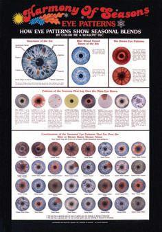 Harmony of Seasons Eye Poster Unlaminated - Color Me A Season Store