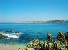 Little fatties at Seal beach  - I wanna feed em  maybe some ?  @vapepositive  @freshjivejuice  @vapescorp @phillipresurreccion .  shop.vapepositive.com  . -----#vape #vapenation #VapePositive #FreshjiveJuice #flavorchaser 's #cloudchaser #eastcoastvapers #southernvapers #westcoastvapers #takeiteasy #goodvibes #ivapeivote #ivapeiskate #skateeverydamnday #blessedlife #familyfirst #tbt #election2016 #bullish #calivapers #norcalvapers #surflife #lifesabeach #lifesbetterinboardshorts…