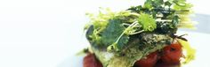 John Dory with roasted tomatoes, by Atul Kochhar, Benares, Mayfair Seafood Dinner, Fish And Seafood, Seafood Recipes, Gourmet Recipes, Easy Indian Recipes, Ethnic Recipes, John Dory, Chef Jobs, Recipe Sites