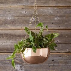 Hanging Copper Planter #williamssonoma