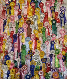 Vintage Equestrian Ribbons